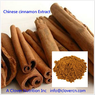 CNS00103 Chinese Cinnamon Extract