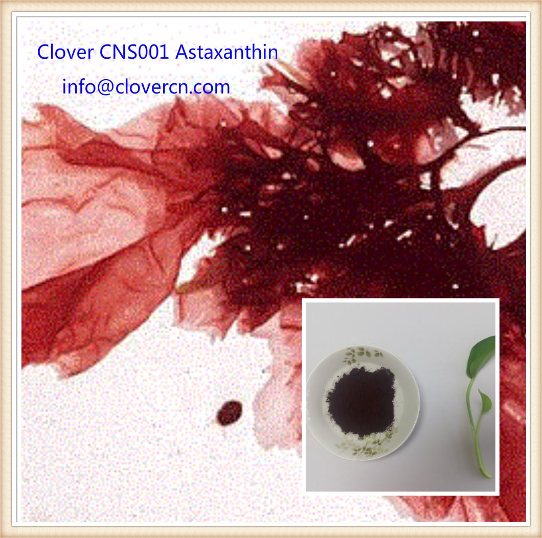 Buy Astaxanthin Clover Nutrition CNS001 Haematoccoccus Pluvialis Powder