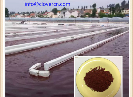 Astaxanthin-Large Stock with Competitive price