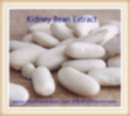 buy White kidney bean extract
