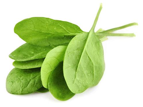 CNS00661 Spinach Juice Powder