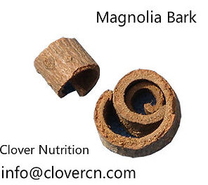 Magnolia Bark Extract