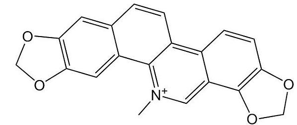 Sanguinarine.png