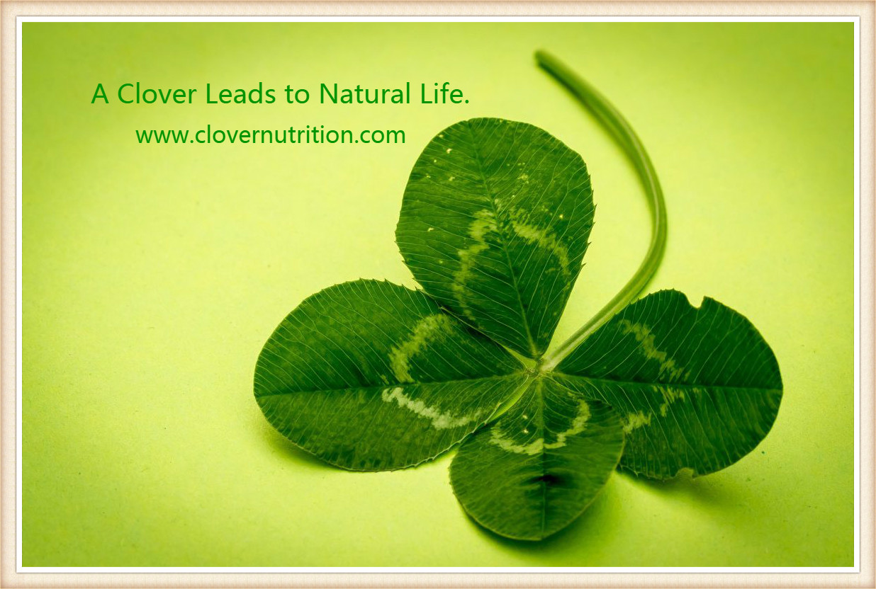 A Clover Leads to Natural Life..jpg