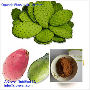 CNS00552 Opuntia Ficus Indica Extract