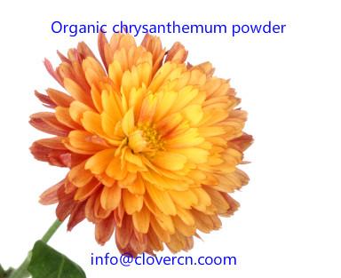 Organic chrysanthemum powder A Clover Nutrition Inc.jpg