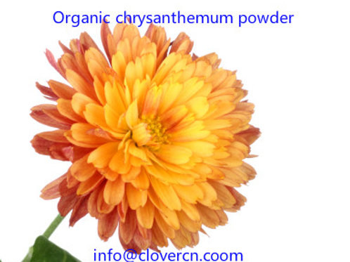 Chrysanthemum Powder