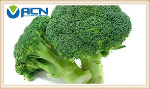 Broccoli Seed Exract