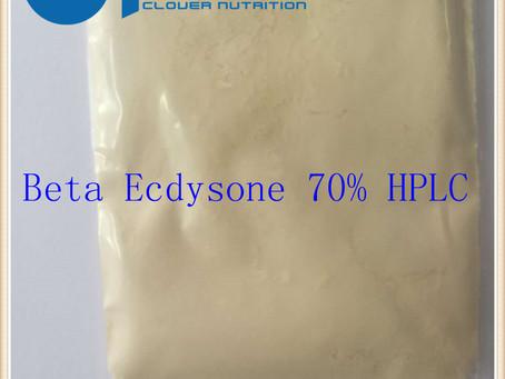 Cyanotis Vaga Extract Natural Ecdysone 20-Hydroxyecdysone