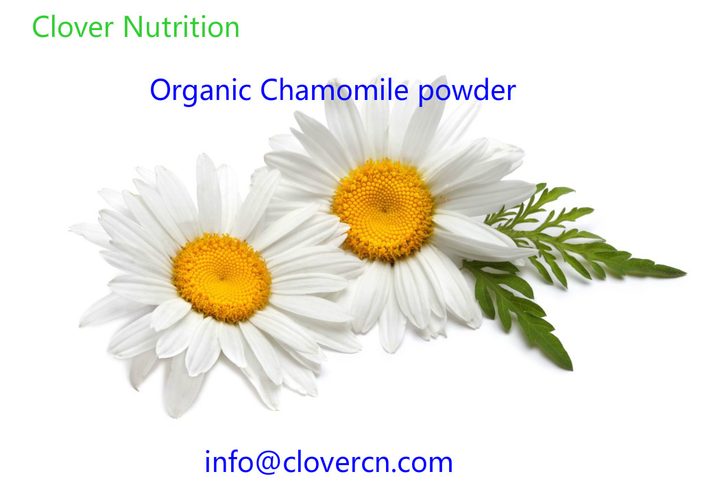 Organic Powder Chamomile powder A Clover Nutrition Inc.jpg