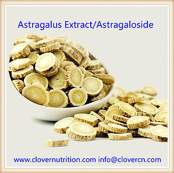 AstragalusExtract