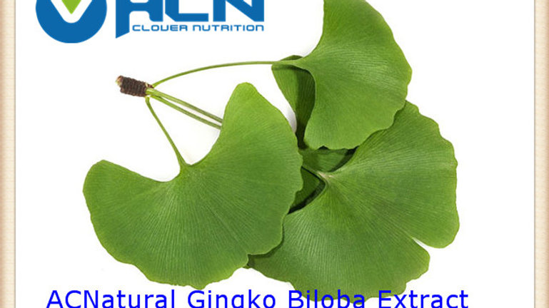 ACNS00211 Ginkgo Biloba Extract(GBE)  24% Flavoneglycosides, 6% Terpene Lactones