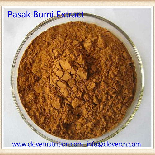CNS0152 Tongkat Ali Extract 50:1