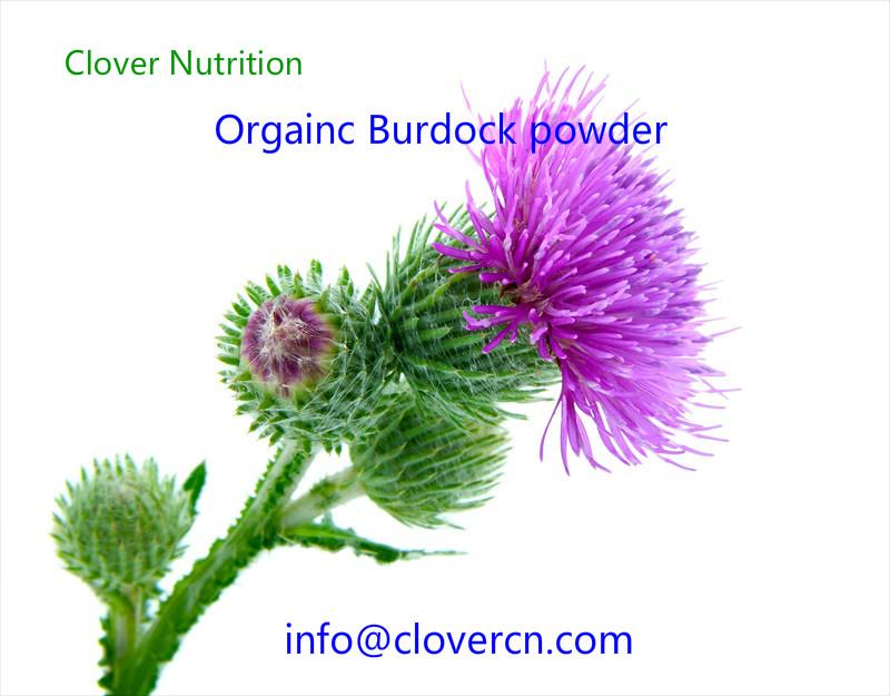 Organic Burdock powder