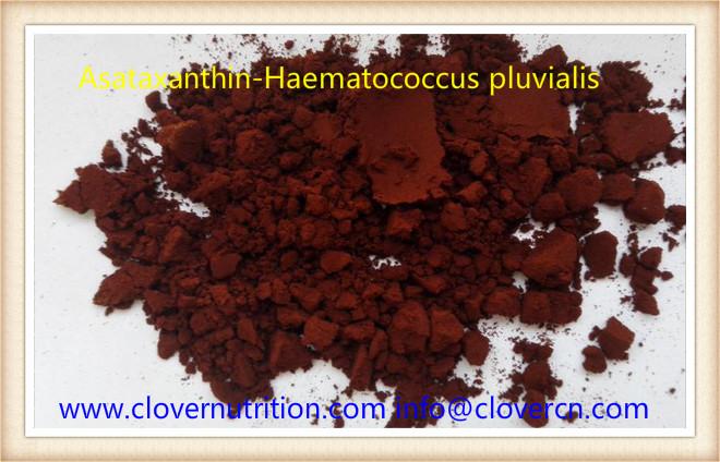 Buy Astaxanthin Asataxanthin-Haematococcus pluvialis