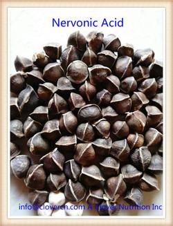 nervonic acid supplement