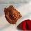 Thumbnail: Coleus Foskohlii 10% HPLC  Forkohlii