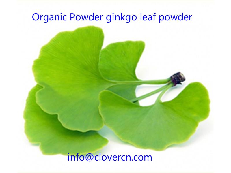 Organic Powder ginkgo leaf powder A Clover Nutrition Inc.jpg
