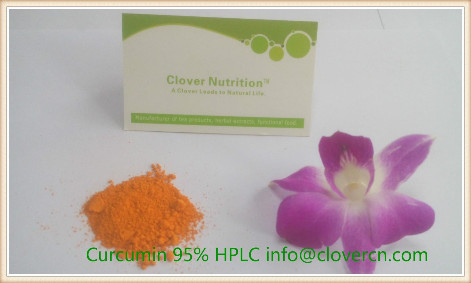 Turmeric Root Extract Curcumin 95% HPLC