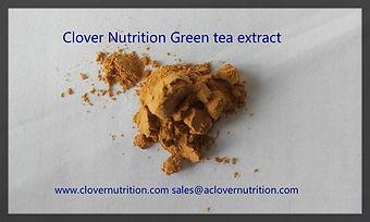 Green Tea Polyphenol