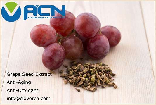 Grape Seed extract.jpg