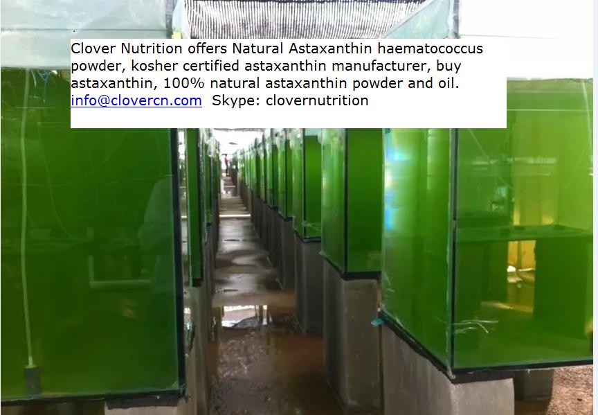 Buy Astaxanthin Astaxanthin Supplier
