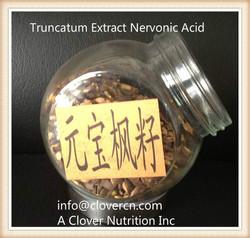 nervonic acid food sources