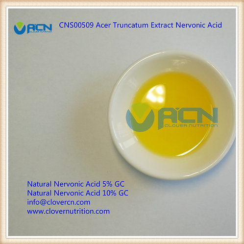 CNS00509 Acer Truncatum Extract Nervonic Acid Oil 10% GC