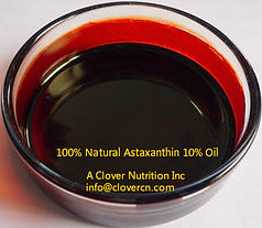 100% Natural Astaxanthin 10% Oil