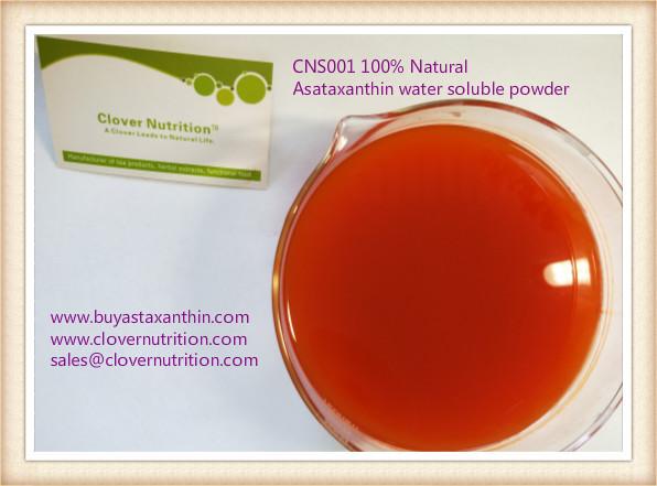 CNS001 Asataxanthin-Haematococcus pluvialis water soluble powder