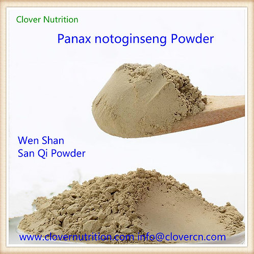 CNS0121  Panax notoginseng Root Powder