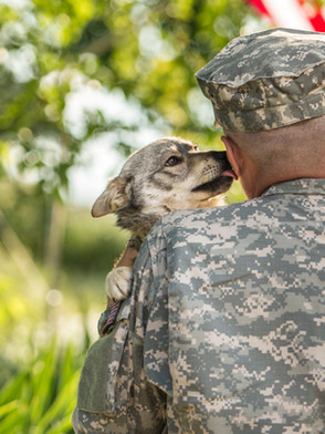 Warrior Buddy, Gino, Brings Veteran Love, Hope & Peace