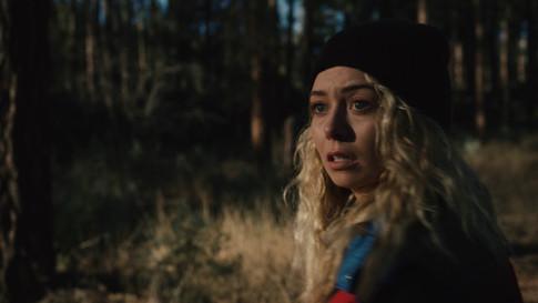The Scarecrow (2019)