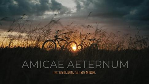 Amicae Aeternum (2016)