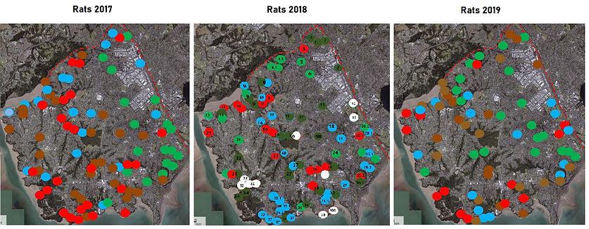 PFK Rats Results 2017 2018 2019.jpg