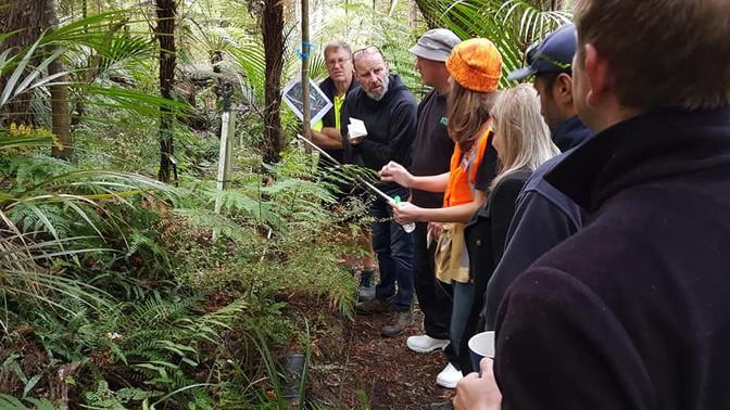 Kaipātiki Environmental Schools Program