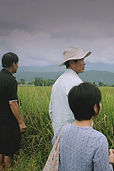 growing-organic-rice-in-chiang-mai-mobil