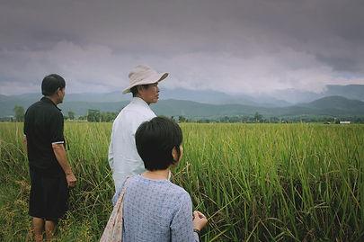 organic-thai-rice.jpg