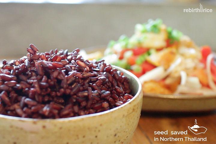 Rebirth Rice Black Rice. Seed Saved in Northrn Thailand.