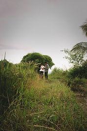 rice-ecosystem.jpg
