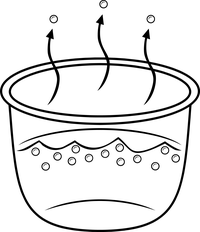while-cooking-rice-water-evaporates.png