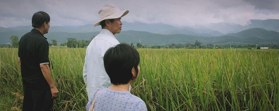 black-rice-direct-trade.jpg
