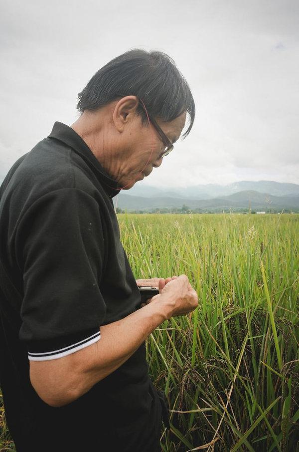 black-rice-miller.jpg