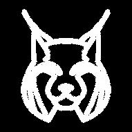 technolynx_logo_v2_dark_theme.png