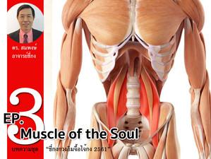 """บทความชุด """"ชี่กงกวงอิมจื้อไจ้กง 2561"""" ตอนที่ 3 Muscle of the Soul"""