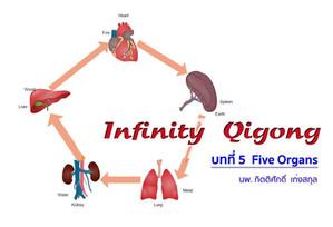 Infinity Qigong บทที่ 5..Five Organs.....ปอด.ตับ.ไต.หัวใจ.ม้าม....