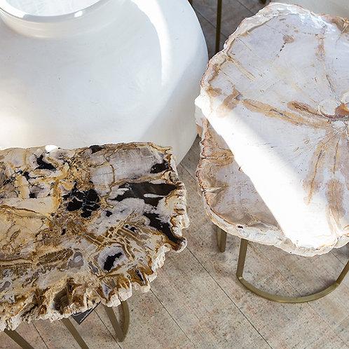 Petrified Wood Side Tables