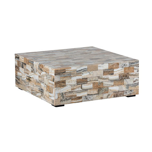 Tiled Petrified Wood Coffee Table -Blanca