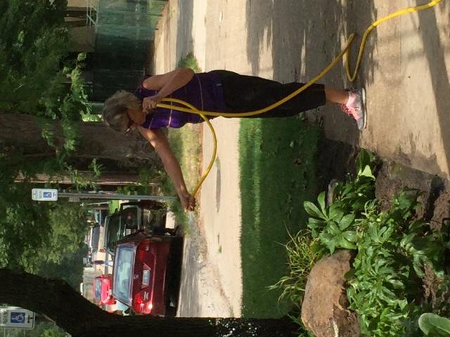 Watering the new garden