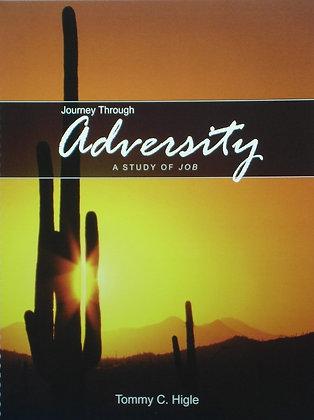 Journey Through Adversity (Job)